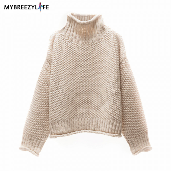 Thick Warm Turtleneck Pullover Sweaters